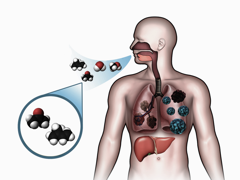 clomiphene citrate clomid testosterone increase